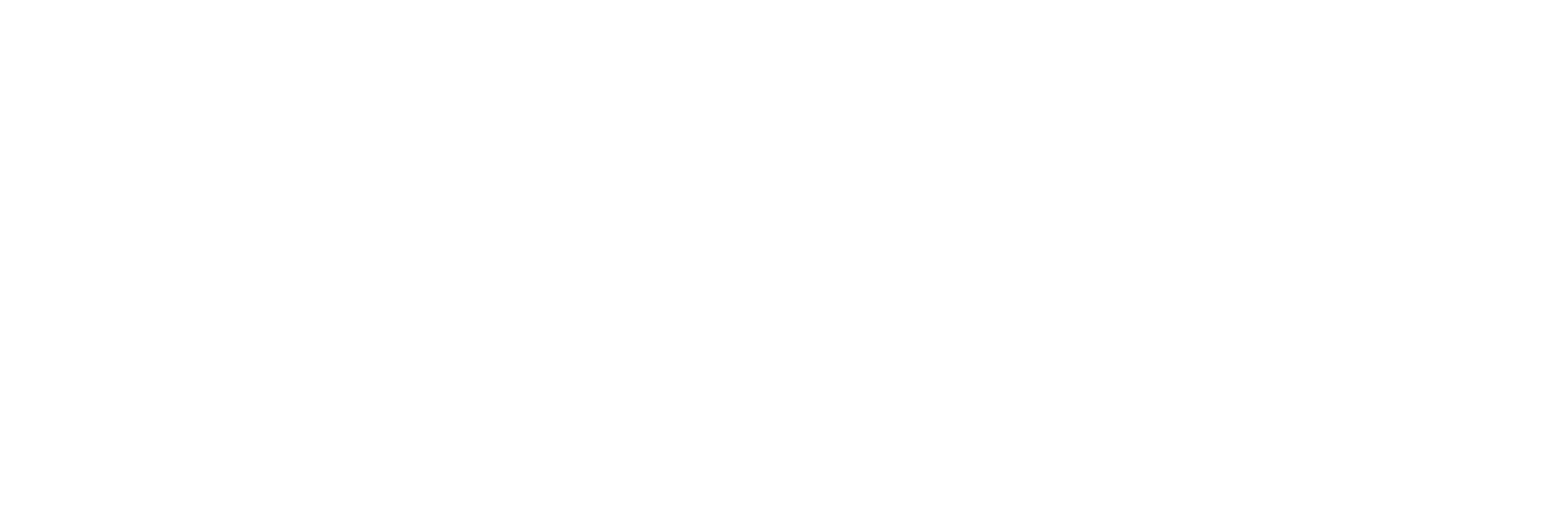 AVL Solutions Group